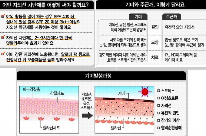 기미·검버섯 예방 자외선 차단제가 해결