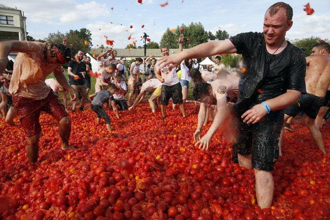 토마토 싸움 축제