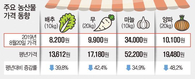 뭇값(20㎏) 60% 폭락 '뿔난 農心'