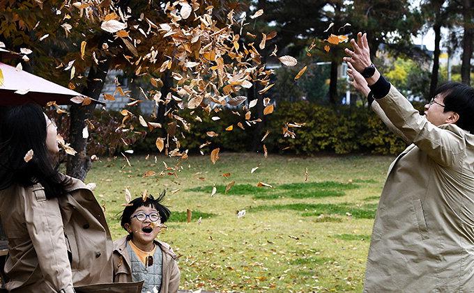 """""""우아∼"""" 낙엽 날리며 가을 만끽"""