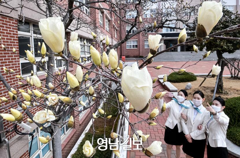 [포토뉴스] 캠퍼스에 활짝 핀 봄