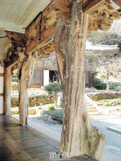 [山寺미학 .19] 구층암과 모과나무 기둥