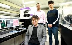 DGIST 문인규 교수팀, 3차원 이미지로 심장근육세포 분석 기법 개발