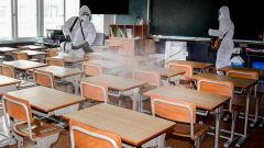 '아이들 맞이' 초등학교의 방역작업