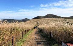 경주국립공원 토함산지구 암곡~무장봉 구간 탐방로 예약제 실시