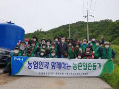 NH농협 예천군지부, 영농철 농촌일손돕기 실시