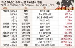 안동산불 피해 당초 추정의 2배, 축구장 2600개 면적…산림손실 208억