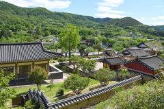 [달성에서 꽃피운 역사인물 .4] 韓日 가교의 상징 항왜 장수 모하당 김충선