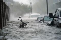 美남동부, 허리케인 '샐리' 강타 피해 속출...1m물폭탄·강풍에 가옥 침수 수백명 구조