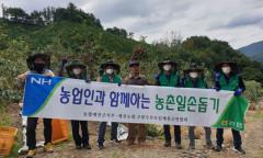 농협예천군지부·예천농협·고향주부모임, 과수농가서 농촌일손돕기