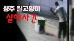 경북 성주서 술취한 남성 새끼 길고양이 4마리 막대기로 때려 죽여...동물단체 ``처벌`` 시위