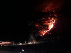 밤 사이 경북 영천 야산 산불···산림 0.4㏊ 태우고 2시간여만 진화