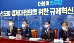 [포토뉴스] 민주당 규제혁신추진단 회의