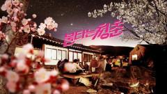 [볼만한 TV프로 (26일)] 불타는 청춘…성국X선영의 아슬아슬 '불타는 첫날 밤'