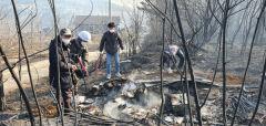 안동·예천 산불에 기초의원들도 힘 보태···일출 직후 산불진화 작업 동참