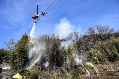 [포토뉴스] 대구 용수동 야산서 불