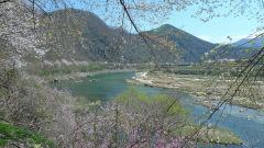 [주말& 여행] 전북 무주 잠두마을 잠두길...봄을 물들인 벚꽃들, 길 입구서 나를 부르네
