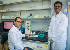 DGIST 에너지공학전공 샨무감 교수팀, 이산화탄소 배출 없이 암모니아 합성하는 새로운 합성촉매 개발