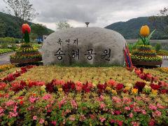 [동네뉴스] 송해 선생과 대구 달성군의 인연…부인의 고향으로