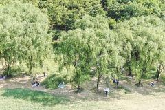 [포토뉴스] 나무 그늘 밑 거리두기