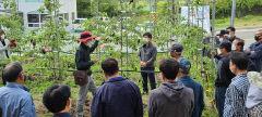 [동네뉴스] 경북 성주 수륜면 사과 재배 농가, 고품질 사과 생산 위한 현장기술 교육 참여