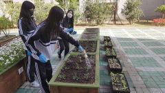 달성군, 학교4-H 비대면 텃밭가꾸기 교육 행사 열어