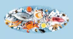 여름엔 해수바닥서 비브리오균 떠올라…배앓이 안하려면 날로 먹지 마세요