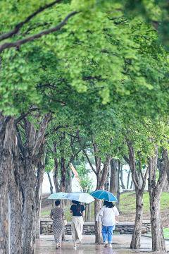 [포토뉴스] 무더위 속 반가운 소나기 내린 대구
