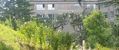 여름 철새가 찾는 대구 수성구 범어동 '야시골공원'...주민들은