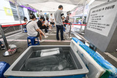 [포토뉴스] 코로나19 선별진료소에 얼음덩어리 등장