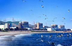 폭염 속 전력난…월성 3호기 발전 재개