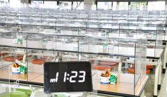 [포토뉴스] 민주노총 총파업에 '급식 대신 빵'