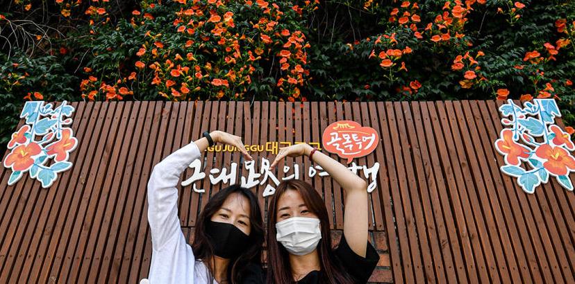 [포토뉴스] 만개한 능소화 앞 하트 포즈