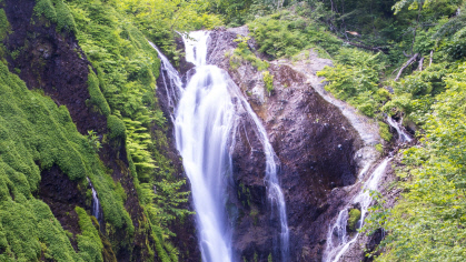 나리분지 땅속 전체가 큰 물탱크 역할...울릉도 전역 청정 암반수 공급