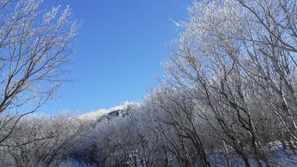 소백산 `첫눈`…성격 급한 올겨울 날씨